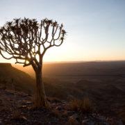 namibia-06